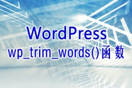 WordPress使用wp_trim_words()函数截取限定字数的内容